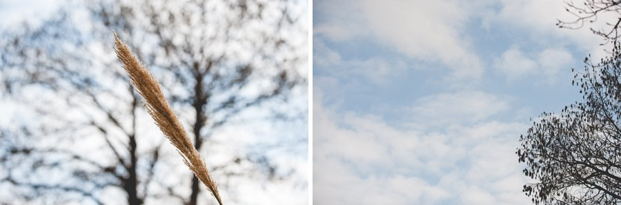 austin-proposal-photography003