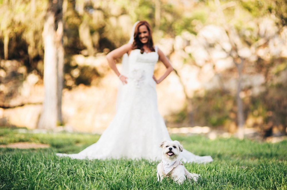 bride posing with her dog during bridal portraits, spring branch wedding photography, austin bridal portrait photographer, natural light portrait photography, classy bridal portrait photographer austin texas, new braunfels, spring branch wedding photographer