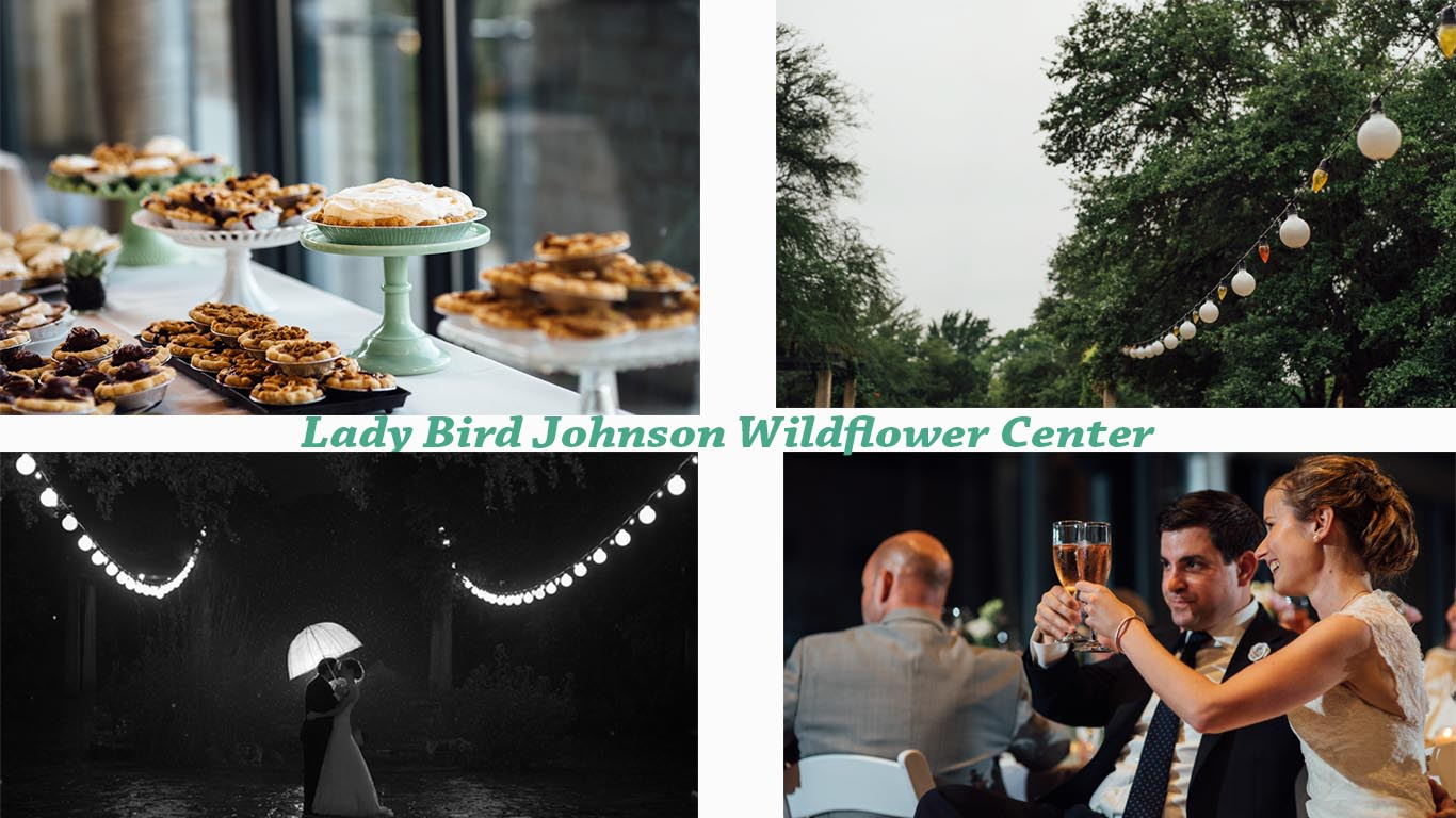 wildflower center wedding example post