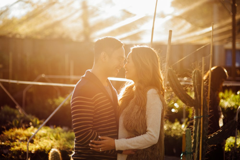 sunlit engagement session with cactus and plants in east austin texas