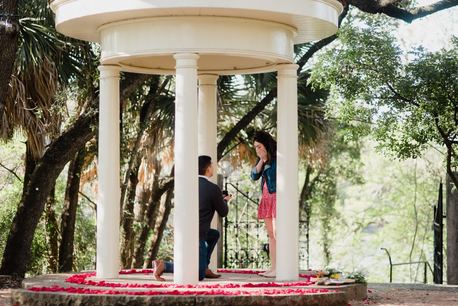 how to plan the perfect surprise proposal in Austin, laguna gloria proposal in spring, outdoor art musuem proposal, austin proposal photographer