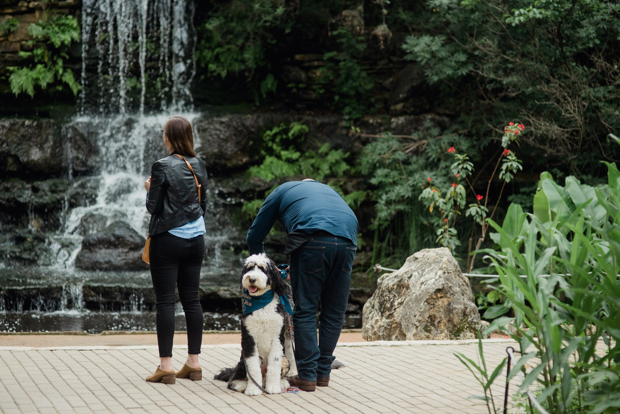 surprise proposal at zilker botanical gardens in austin, austin proposal photography